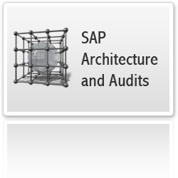 Architecture and Audits